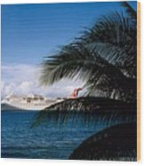 Carnival Docked At Grand Cayman Wood Print
