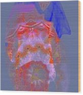 Carnival Abstract 3 Wood Print