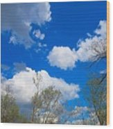 Carolina Blue Sky After The Rain Wood Print