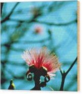 Carolina Flower And Bird Wood Print