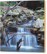 Carolina Mountain Stream Wood Print