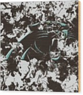 Carolina Panthers 1b Wood Print