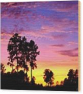 Carolina Pine Sunset Wood Print