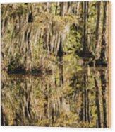 Carolina Swamp Wood Print