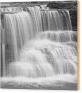 Caron Falls Wood Print