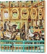 Carousel - Como Zoo, St. Paul, Minnesota Wood Print