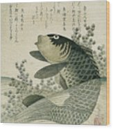 Carp Among Pond Plants Wood Print