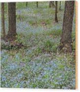 Carpet Of Blue Wood Print