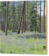 Carpet Of Lupine In Washington Forest Wood Print