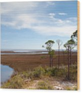 Carrabelle Salt Marshes Wood Print