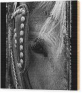 Carriage Horse B And W Wood Print