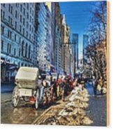 Carriage Ride Wood Print