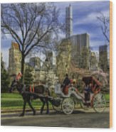 Carriage Ride In Central Park Wood Print