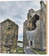 Carrigafoyle Castle - Ireland Wood Print