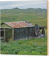 Carrizo Plain Ranch Wood Print