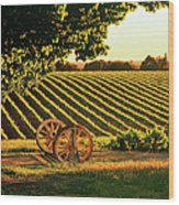Cart Wheels At Barossa Valley Vineyard, South Australia Wood Print by Peter Walton Photography