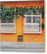 Cartagena Street Wood Print