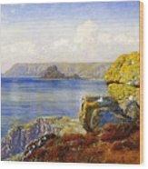 Carthillon Cliffs Wood Print