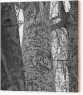 Carved Love Wood Print