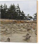 Carved Sandstone Along The Oregon Coast - 2 Wood Print