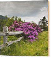 Carvers Gap Roan Mountain State Park Highlands Tn Nc Wood Print
