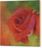 Cary Grant Rose Wood Print