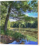 Cary Lake In August Wood Print