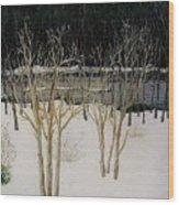Cary Winter-sold Wood Print
