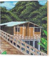 Casa Grande Wood Print