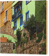 Casa Lima On The Hill Wood Print