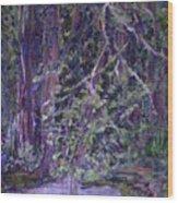 Casa Mesa Wood Print