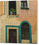 Casa With Sea Green Wood Print