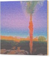 Casapaz  Palm At Dawn Wood Print
