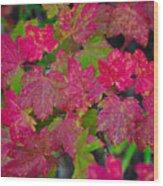 Cascade Autumn Leafs 7 Wood Print