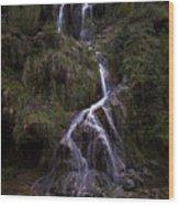 Cascade De Baume-les-messieurs  Wood Print