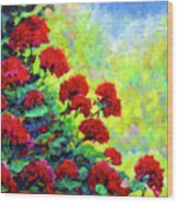 Cascade Of Geraniums Wood Print