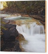 Cascade On Beauty Creek Wood Print by Larry Ricker