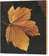 Cascade Orange Wood Print