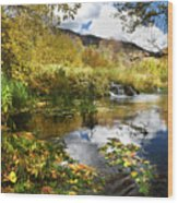 Cascade Springs Large Pool  Wood Print