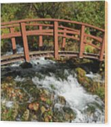 Cascade Springs With Bridge Wood Print