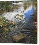Cascade Springs With Rock Wood Print