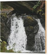 Cascade Waterfalls Wf1003 Wood Print