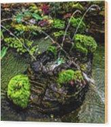 Cascades Fountains Wood Print