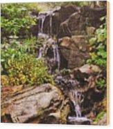 Cascades N Pool Wood Print