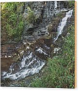 Cascadilla Falls Creek Gorge Trail Giant's Staircase Wood Print