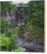 Cascadilla Gorge Cornell University Ithaca New York 01 Wood Print