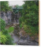 Cascadilla Gorge Cornell University Ithaca New York 02 Wood Print