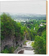 Cascadilla Gorge Cornell University Ithaca New York Panorama Wood Print