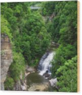Cascadilla Waterfalls Cornell University Ithaca New York 01 Wood Print