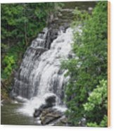 Cascadilla Waterfalls Cornell University Ithaca New York 03 Wood Print